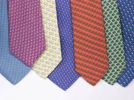 Corbatas Animal Ties